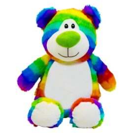 Bright Rainbow Bear Cubby
